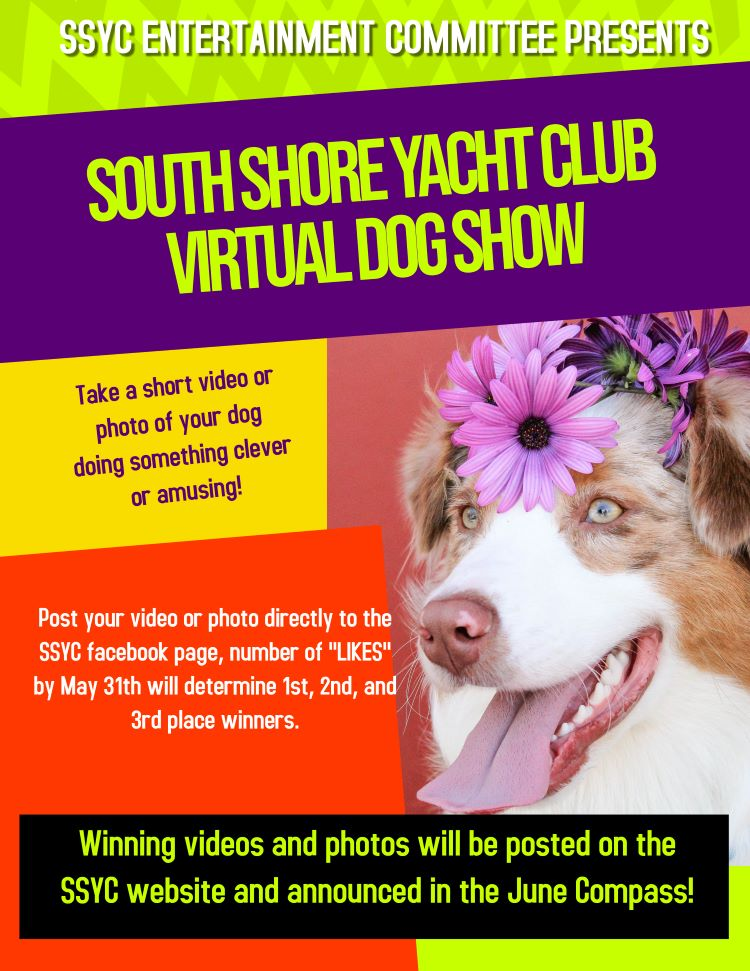 Virtual Dog Show final 1